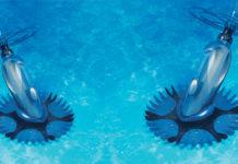 limpiafondos barracuda de zodiac